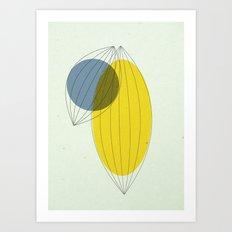 Fig. 1a Art Print