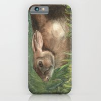 iPhone & iPod Case featuring Shy Rabbit by Donna Marie Strachan