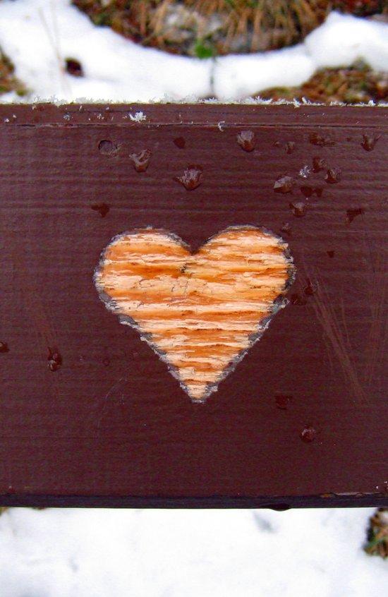 wooden heart. Art Print