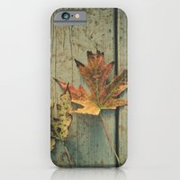 Fallen Ones, Two Autumn Leaves on Rustic Blue Porch Boards iPhone 6 Slim Case