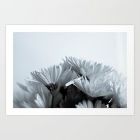 What Is A Flower Without… Art Print