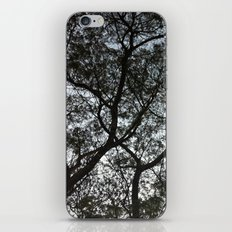 Under the trees II iPhone & iPod Skin