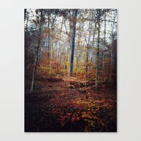 explore color Canvas Print