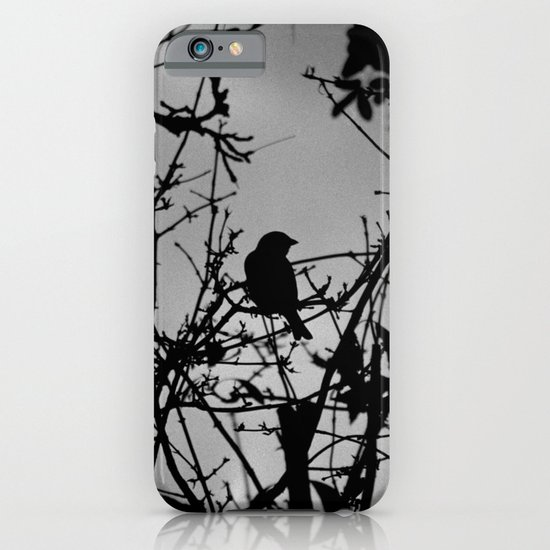 Silhouette Bird.  iPhone & iPod Case
