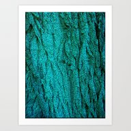 TreeBark Art Print