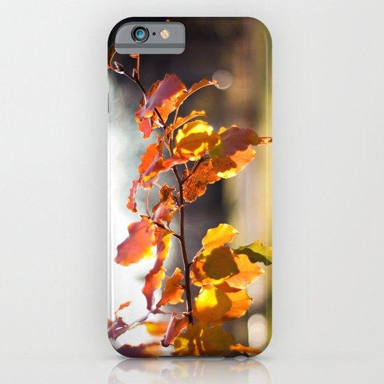 Embers III iPhone & iPod Case
