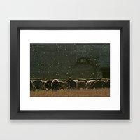 Sheep. Framed Art Print