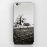 { skeleton trees } iPhone & iPod Skin