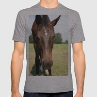 Horse Mens Fitted Tee Athletic Grey SMALL