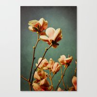 when there was spring Canvas Print