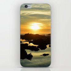 enticing iPhone & iPod Skin