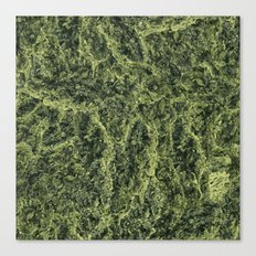 Plant Matter Pattern Canvas Print