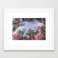 Pinktober Framed Art Print
