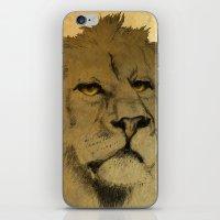 LION EYES iPhone & iPod Skin