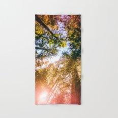 California Redwoods Sun-rays and Sky Hand & Bath Towel