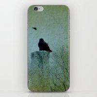Faded Green  iPhone & iPod Skin