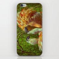 Fighting Flamingos iPhone & iPod Skin