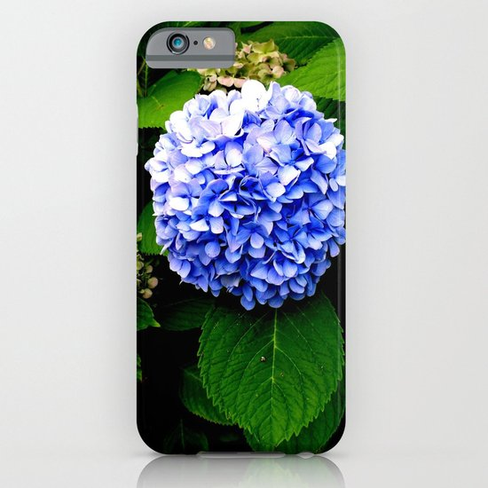 Blue Flower (Edited) iPhone & iPod Case