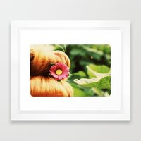 Ginger Bun Framed Art Print