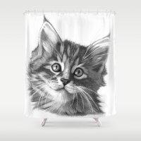 Maine Coon Kitten G114 Shower Curtain