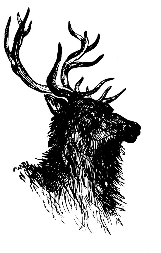 Vintage Buck Art Print