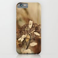iPhone & iPod Case featuring Spring by jmdphoto