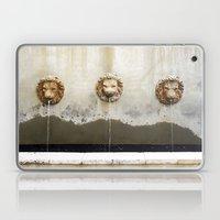 Three Lions Fountain Laptop & iPad Skin