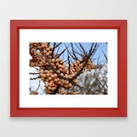 Crammond Framed Art Print