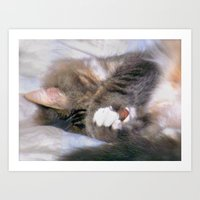 My Cat Actually Sleeps This Way Art Print