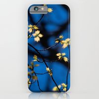 iPhone & iPod Case featuring Leaves Of Spring by TDSWHITE