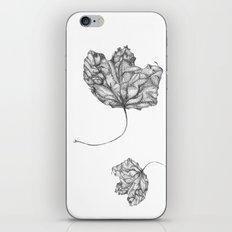 Leaf iPhone & iPod Skin