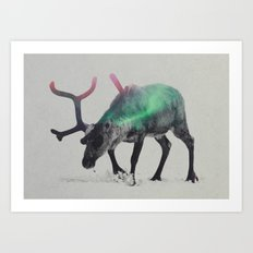 Reindeer In The Aurora B… Art Print
