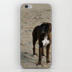 Matty iPhone & iPod Skin