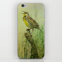The Meadow Lark Sings iPhone & iPod Skin