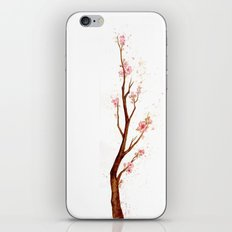 Cherry Tree Branch iPhone & iPod Skin