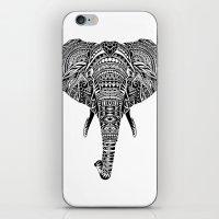 Polynesian Elephant iPhone & iPod Skin