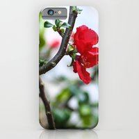 Wee Red Flowers iPhone 6 Slim Case