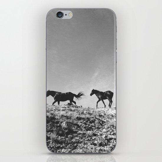 Pryor Mountain Wild Mustangs iPhone & iPod Skin