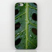 Monsterio iPhone & iPod Skin