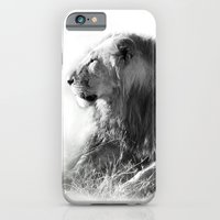 iPhone & iPod Case featuring Lion in the Sunshine by jacqi