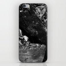 Burnt iPhone & iPod Skin
