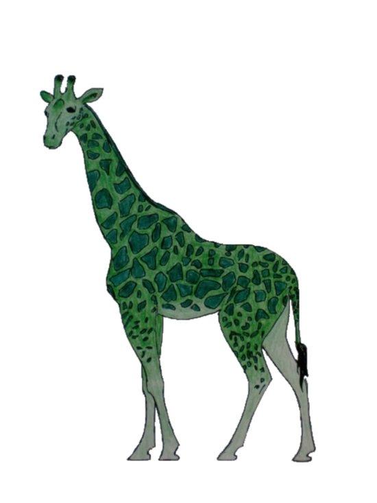 Giraffe is for Green Art Print