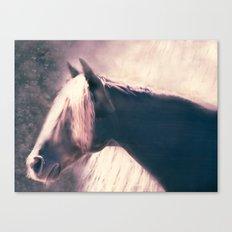 Lightness of Being Canvas Print