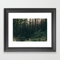 COLD PINES Framed Art Print
