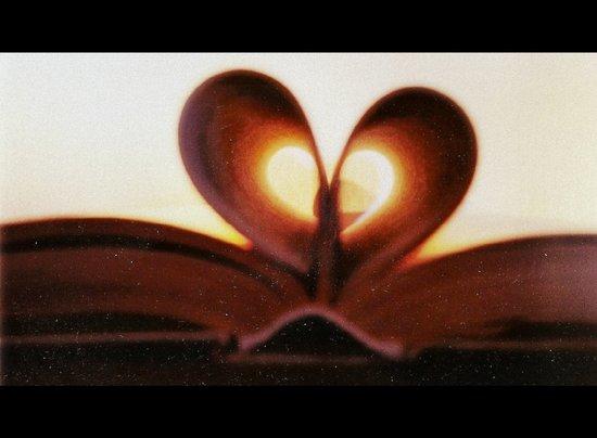 Love Book Art Print