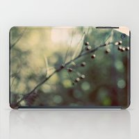 Soothing iPad Case