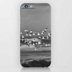 Seagulls flying over the mediterranean sea in Tel Aviv,Israel Slim Case iPhone 6s