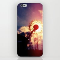 Dandelion In The Sun iPhone & iPod Skin