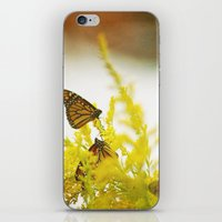 You Give Me iPhone & iPod Skin