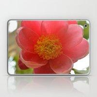 Watered Pink Flower Laptop & iPad Skin